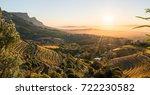eagle's nest | Shutterstock . vector #722230582