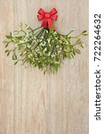 christmas mistletoe bunch with... | Shutterstock . vector #722264632