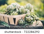 Freshly Harvested Artichokes I...