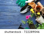 Plants And Gardening Tools On...