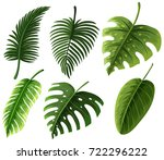 different kinds of leaves... | Shutterstock .eps vector #722296222