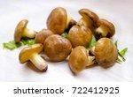 suillus luteus mushrooms.... | Shutterstock . vector #722412925