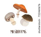 autumn mushrooms edible... | Shutterstock .eps vector #722460676