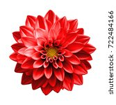 Small photo of Surreal dark chrome red flower dahlia macro isolated on white