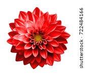 surreal dark chrome red flower... | Shutterstock . vector #722484166