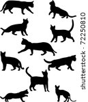 Stock vector cats collection vector 72250810