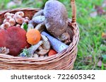 mushrooms collected in a basket.... | Shutterstock . vector #722605342