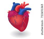 human body heart organ | Shutterstock .eps vector #722651365