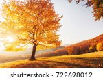 awesome image of the shiny... | Shutterstock . vector #722698012