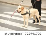 guide dog helping blind man on... | Shutterstock . vector #722941702