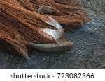 mesh fish | Shutterstock . vector #723082366