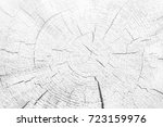 white texture of ash tree | Shutterstock . vector #723159976