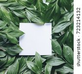 mockup green leaves. creative... | Shutterstock . vector #723214132