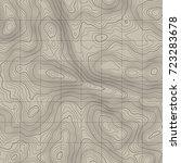 topographic map background... | Shutterstock .eps vector #723283678