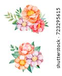 beautiful floral collection... | Shutterstock . vector #723295615