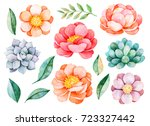 handpainted watercolor peonies  ... | Shutterstock . vector #723327442