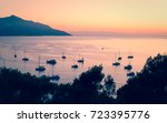 private boats and small yachts... | Shutterstock . vector #723395776