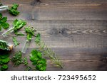 healing herbs. fresh leaves and ... | Shutterstock . vector #723495652