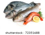 seafood isolated on white... | Shutterstock . vector #72351688
