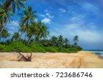 tropical beach with palms.beach ... | Shutterstock . vector #723686746
