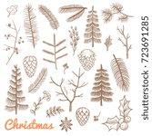 hand drawn fir and pine... | Shutterstock .eps vector #723691285