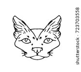 cat illustration. doodle style. ... | Shutterstock . vector #723703558