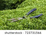 Hedge Trimmer  Shears  On...