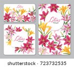colorful lilies flower on white ... | Shutterstock .eps vector #723732535