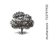 engraved tree. vector... | Shutterstock .eps vector #723797932