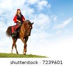 horse show in fancy dress  ... | Shutterstock . vector #7239601