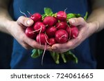 a young man holds a red radish... | Shutterstock . vector #724061665