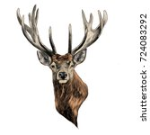 deer deer sketch vector... | Shutterstock .eps vector #724083292