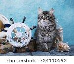 Stock photo kitten sits next to the sea decor captain 724110592