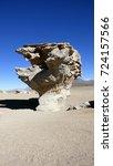 Small photo of Tree in Altiplano. Bolivia, south America.