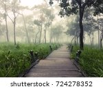 pathway for waling in green... | Shutterstock . vector #724278352