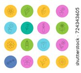 flowers linear icons set.... | Shutterstock . vector #724343605