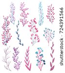set plants. watercolor... | Shutterstock . vector #724391566