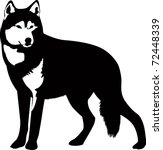 wolf isolated on white... | Shutterstock .eps vector #72448339
