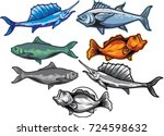 vintage fishing emblems labels... | Shutterstock .eps vector #724598632