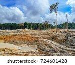 rainforest destruction. gold... | Shutterstock . vector #724601428