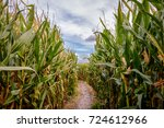 Small photo of A corn maze or maize maze is a maze cut out of a corn field. The first corn maze was in Annville, Pennsylvania. Corn mazes have become popular tourist attractions in North America.