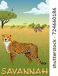 african savannah with cheetah   ... | Shutterstock .eps vector #724660186