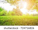 park green forest  | Shutterstock . vector #724716826