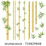 bamboo stems and leaves on...   Shutterstock .eps vector #724829848