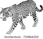 black and white vector sketch... | Shutterstock .eps vector #724866202