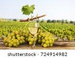 white grapes landscape vineyard ...   Shutterstock . vector #724914982