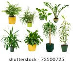collection of eight different... | Shutterstock . vector #72500725