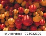 yellow and red farmer tomatoes... | Shutterstock . vector #725032102