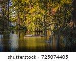 Cypress Lake at Lafayette