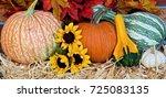 Pumpkins   Gourds
